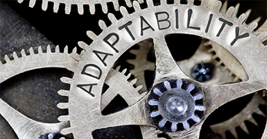 Franklin Templeton Insights: Adaptability Goes a Long Way ...